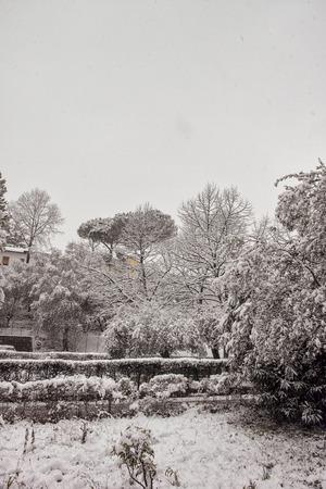 snow and ice near my house in la spezia