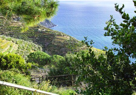 scenery of ligurian coast line in summer time
