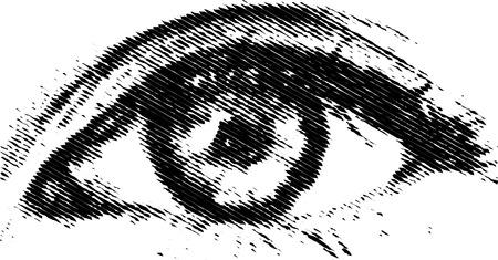 caucasian: vector eye