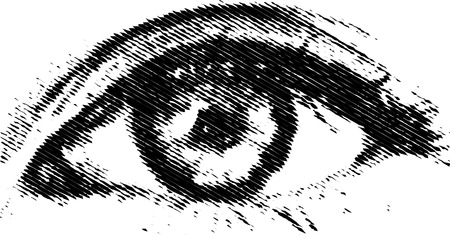 vector eye Stock Vector - 3638373