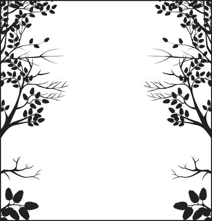 branch cut: frame tree