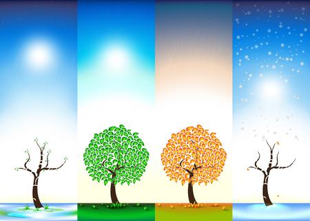 Four seasons. Spring. Summer. Autumn. Winter. Bloom. Foliage. Rain. Snow. Vector illustration. Illustration