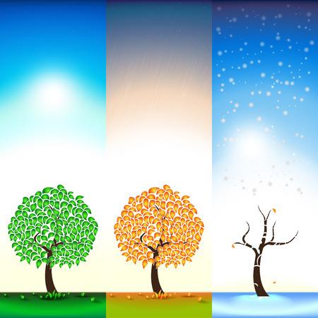 Three seasons. Summer. Autumn. Winter. Tree. Falling Leaves, snow, rain. Illustration