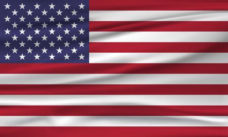 Vector vlag van de VS Vector illustratie