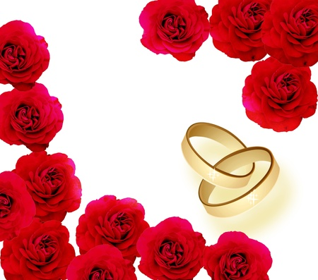 rose with rings photo