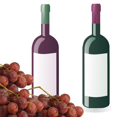 winy: bottles of white and red wine and grapes isolated on white background