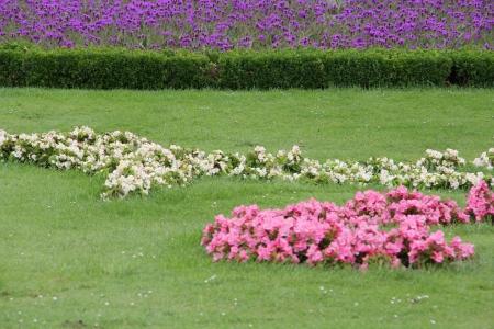 topiary: park