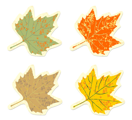 Set of vintage colorful maple leaves grunge  Stock Vector - 22550136