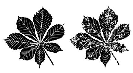 Black grunge leaves of chestnut tree vector eps 10 Çizim