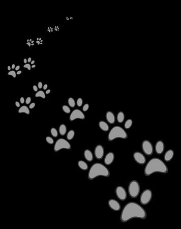 huellas de perro: Perro lindo o gato pata de impresión, sobre fondo negro