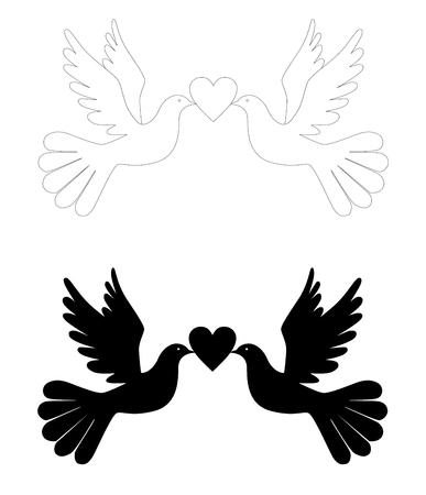lovebird: love pigeons