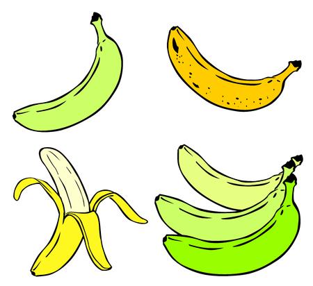 Cartoon Illustration de Banana Fruit Food Objet vecteur 10 Illustration