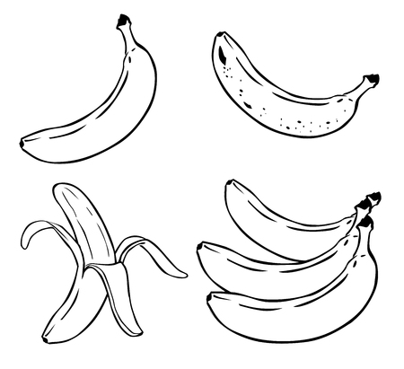 Cartoon Illustration of Banana Fruit Food Object vector 10