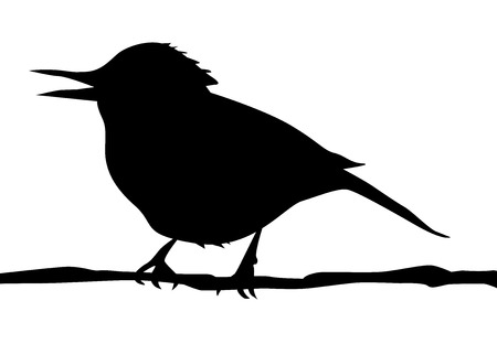 article icon: Silhouette of a bird on branch vector