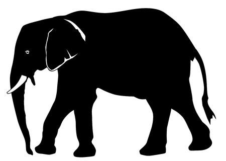 Elephant icon on white background, vector illustration. Çizim