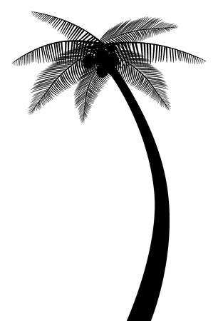 palm tree silhouette vecteur eps 10