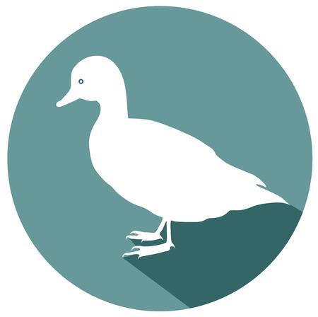 Duck flat design icon vector. Illustration