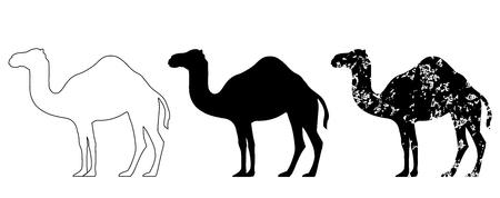 Camel set black white grunge vector eps 10 Illustration