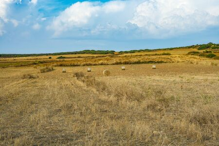 plowed field with hay bales in Sardinian island