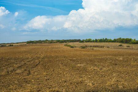 plowed wheat field in Sardinian island