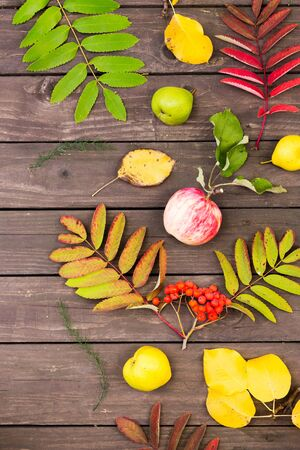 Top view of autumn leaves and fruit on a wooden table