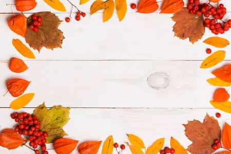 Autumn text frame on white background. Flat lay, top view, copy space