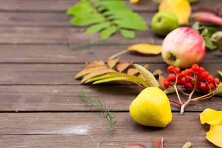 Apples, Rowan fruits, pears on a wooden background with copy space