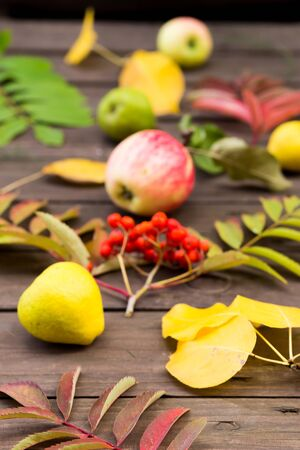 Close up of autumn yellow, red leaves and fruit on wooden background. Golden autumn