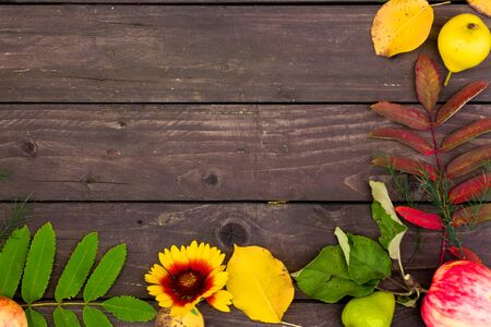 Autumn wooden background with copy space for text
