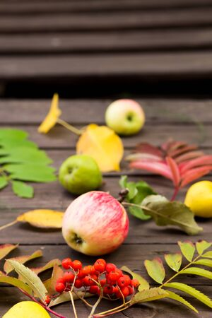 Ripe red Rowan fruits, apples, pears with autumn leaves on brown wooden background Imagens