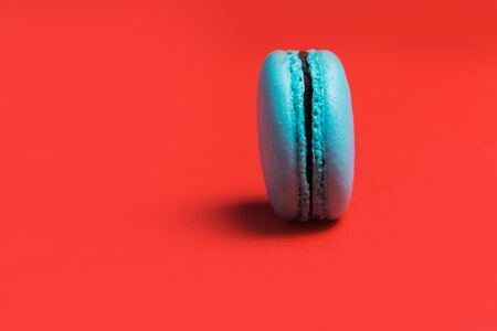 One blue French macaroon on a colorful red background, closeup Banco de Imagens