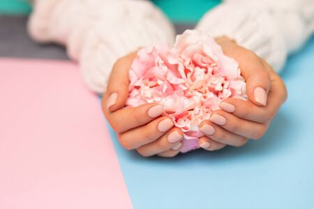 Beautiful flower on a womans hand on a bright colored background, closeup