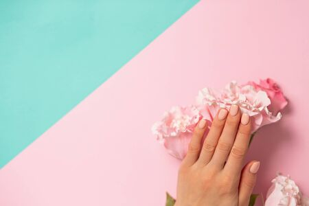 Closeup of beautiful female hand with a delicate manicure on nails on the pink flower. on a two tone pastel blue and pink background, copy space. Care, beauty, Spa, salon concept