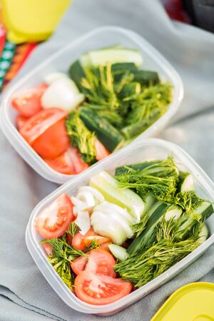 Closeup of containers with vegetables in nature during a picnic. Summer, rest, healthy eating concept 写真素材
