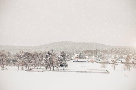 Hermoso invierno blanco en el pueblo, viajes, nevadas