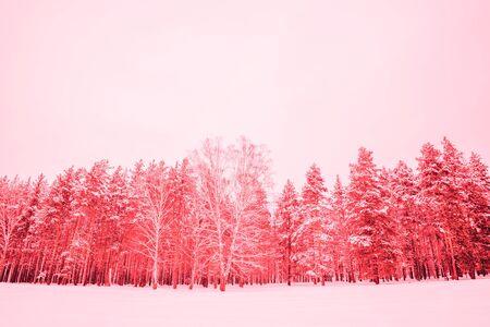 Abstract bright color photo of a winter landscape, coral Archivio Fotografico - 138107085