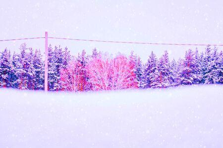 Abstract bright color photo of a winter landscape, pink and purple Archivio Fotografico - 138113227