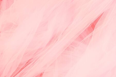 Beautiful coral white background of tulle veil