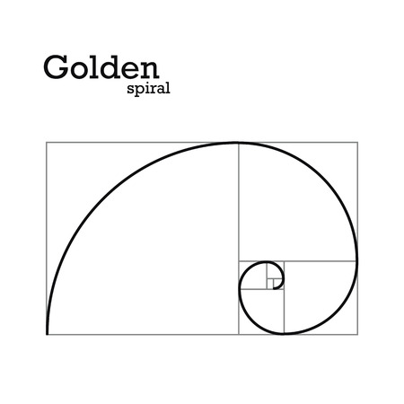Golden proportion Vector