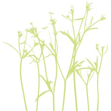 wellness environment: Flowers - Design elements