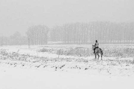 Horseback riding in winter field Stock Photo