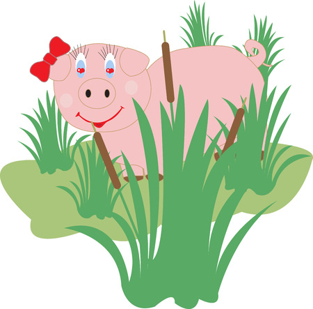 swamp: funny pig lovers in the swamp