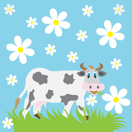 daisy: funny cow eating grass on a blue background with daisies