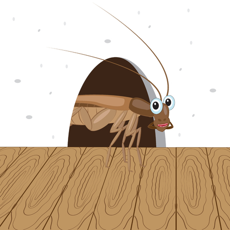 Funny roach peeking out of a hole in the wall. Vector illustration