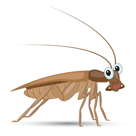 disgusting animal: Funny cartoon insect with kind eyes with shadow on white illustration. Illustration