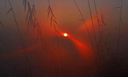 Sunrise on a misty morning in Nepal.