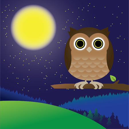 nocturnal: Vector illustration of an owl at night