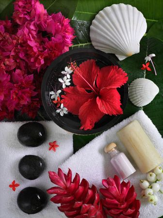 spa beauty exotic tropical flowers sea shells stons towels salt soap on green leaves Stock Photo - 3747734