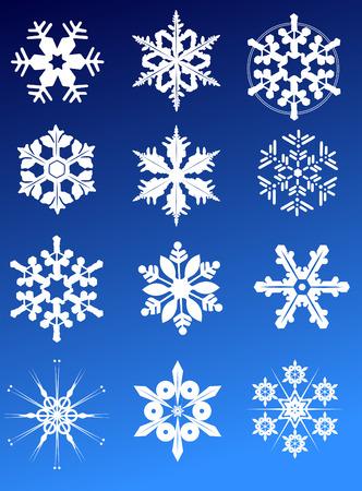 Twelve snowflakes as winter design element Vector