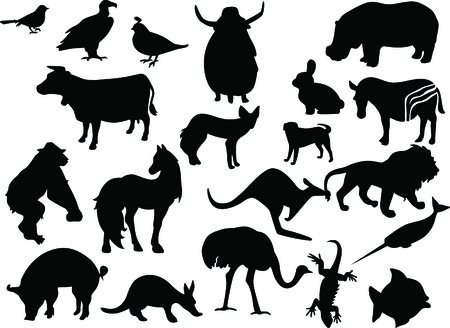 Animals black silhouettes. Vector Vector